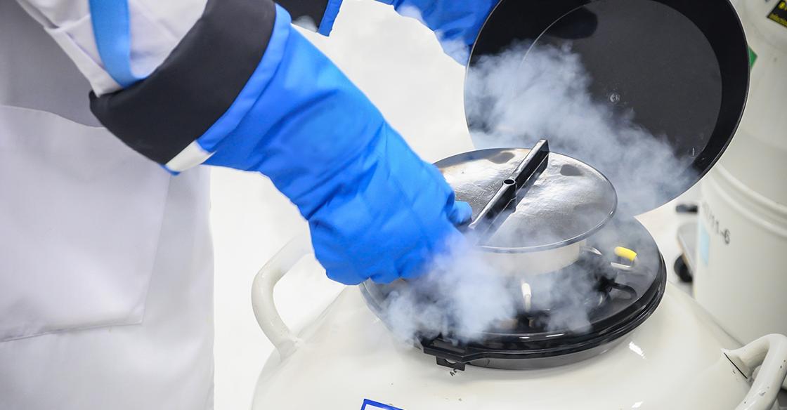 Cryogenic Blog